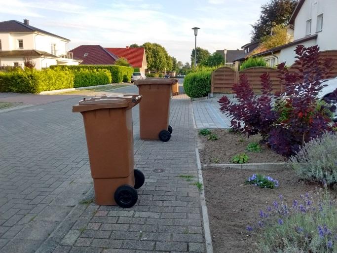 Schmaler Fußweg, blockiert durch Mülltonnen - im Hintergrund durch überhängende Hecken